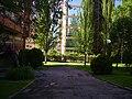 Jardín - panoramio - Ricardo Ricote Rodrí… (1).jpg