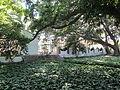 Jardines de la Cónsula 07.jpg