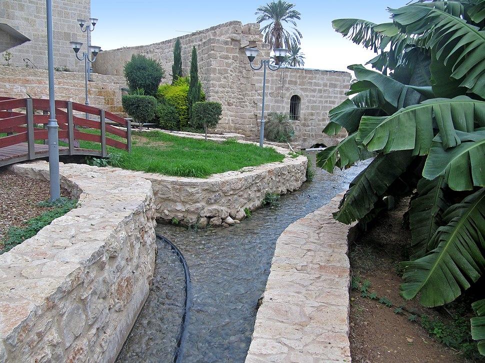 Jericho - Elisha's Fountain6