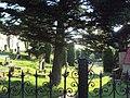 Jestřebí hřbitov 2.JPG