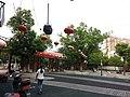 Jiangyin, Wuxi, Jiangsu, China - panoramio (18).jpg