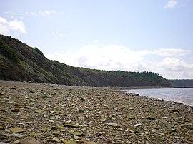 Joggins Fossil Cliffs.jpg
