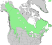 Juniperus communis North American range map 3.png