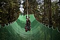 Just hanging out (14799205521).jpg