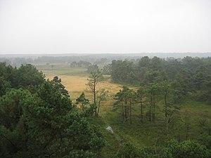 De Zoom – Kalmthoutse Heide - Kalmthout Heath