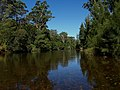 Kangaroo River, East to Hampden Bridge, NSW Australia - panoramio.jpg