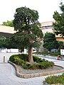 Kansai University 5.JPG