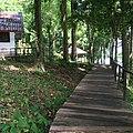 Khuekkhak, Takua Pa District, Phang-nga, Thailand - panoramio (14).jpg
