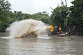 Kings Lake Dredging - Banyan Avenue - Indian Botanic Garden - Howrah 2013-10-27 3849.JPG