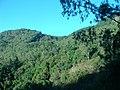 Kodai Ghat - panoramio (1).jpg