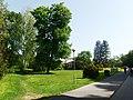 Kostelec (Zlín), lázně, park (1).jpg