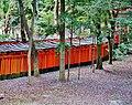 Kyoto Schrein Fushimi-Inari-taisha Torii 28.jpg