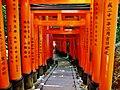 Kyoto Schrein Fushimi-Inari-taisha Torii 41.jpg