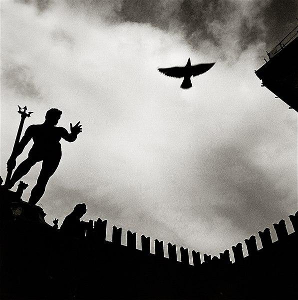 File:LA5 Bologna di Augusto De Luca.jpg