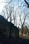LSG Calenberger Leinetal - Alt Calenberg - Ruinen (5).jpg