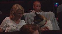 Nijmeegse bioscoop nodigt baasjes en honden uit voor  Isle of Dogs