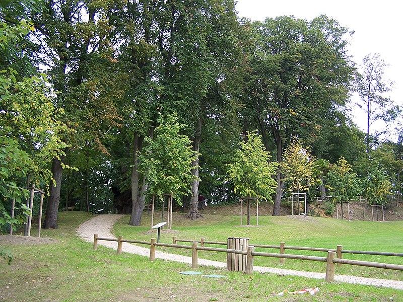 Site de Tournebride à la Celle-Saint-Cloud (Yvelines, France)