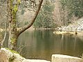 Lac du Fischboedle (790 m).jpg