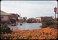 Lagoon and Orange- colored flowers San Francisco Fair (4157853051).jpg