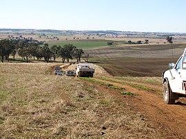 Landscape near Cumnock, NSW.jpg