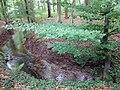 Landschaftsschutzgebiet Waldgebiete bei Dielingdorf und Handarpe LSG OS 00025 Datei 20.jpg