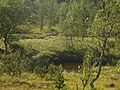 Lapland - Urho Kekkonen National Park - 20180728172104.jpg
