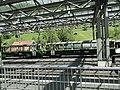 Lauterbrunnen - panoramio (10).jpg