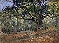 Le Chene de Bodmer, La Route de Chailly (Monet).jpg