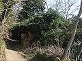 Le case diroccate di Cecani di sopra - panoramio.jpg