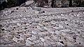 Le plus ancien et le plus grand cimetère juif du monde.jpg