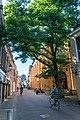 Leeuwarden - panoramio - L-BBE (23).jpg