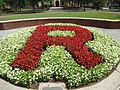 Letter R in red surrounded by green at Rutgers University.jpg