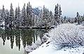 Like Fresh Linen, Yosemite NP 5-20-15 (18707311664).jpg