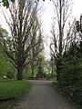 Lindener Bergfriedhof - Hannover-Linden Stadtfriedhof Am Lindener Berge - panoramio (8).jpg