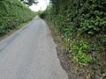 Llanllechid, UK - panoramio (190).jpg
