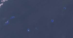 Loaita Island - Loaita Island