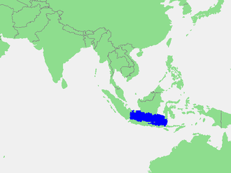 Java Sea - Location of the Java Sea