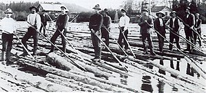 Pike pole - Pike poles being used on a log drive