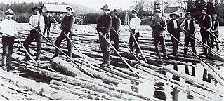Log driving Letting tree trunks float downriver