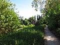 Longpont-sur-Orge - Chemin du moulin de Basset - 20110519 (2).JPG