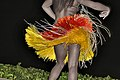 Luau Dancer - Maui, Hawaii.jpg