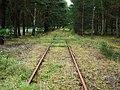 MOs810 WG 41 2017 (Sulecin, Osno, Przewoz) (railway line 380).jpg