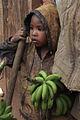 Madagascar (8550482600).jpg