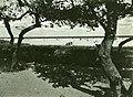 Madras Beach (BOND 0402).jpg