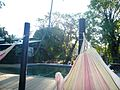 Magnetic Island - In the hammock (4073836607).jpg