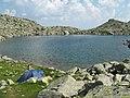 Malul lacului Mandra - panoramio.jpg