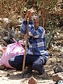 Man with Walking Staff by Roadside - En Route from Bahir Dar to Gondar - Ethiopia (8685131005).jpg
