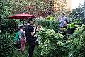Marina Zurkow's Garden (28515355002).jpg