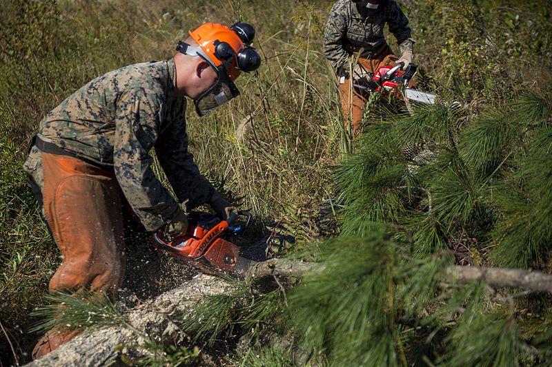 File:Marines face nature head-on 161013-M-GD641-0004.jpg