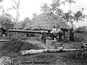Second Samoan Civil War - Image: Marines naval gun samoa